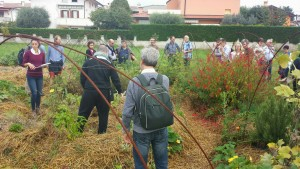 San Giuseppe di Cassola synergistic garden
